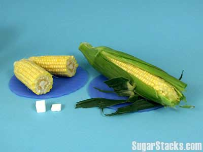One ear of corn - 5g